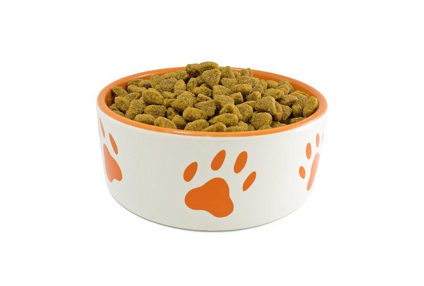 Napf mit einem getreidefreiem Trockenfutter für Hunde
